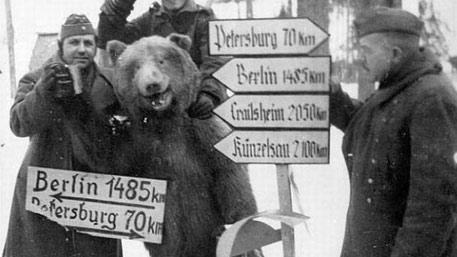 Наркотические патрули Третьего рейха. С чем экспериментировали нацисты