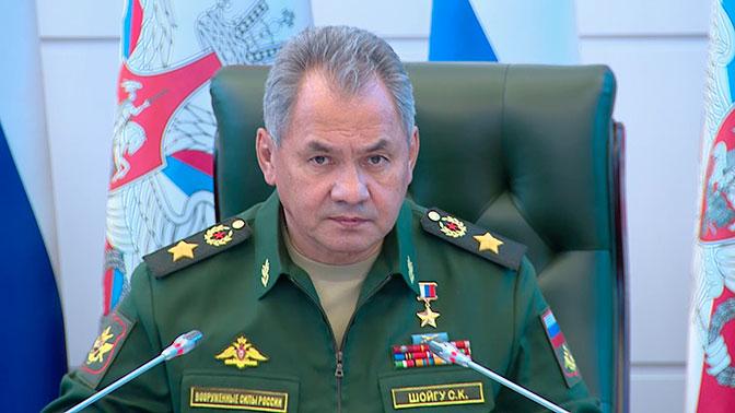 Шойгу обсудил с главой военного ведомства Франции катастрофу Ил-20 в Сирии