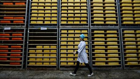 Италия выступила против продления санкций в отношении России