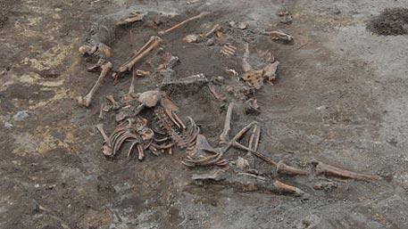 Волынская резня: Киев вывело из себя признание Варшавой геноцида поляков