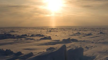 Cо дна океана в Арктике раздается таинственный гул