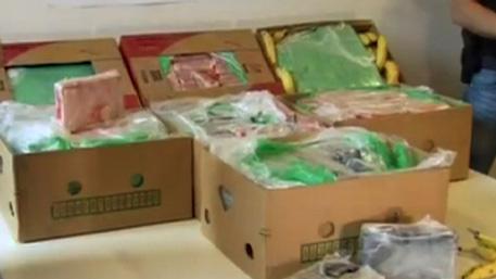 Полиция Эквадора конфисковала кокаин на сумму в полмиллиарда долларов