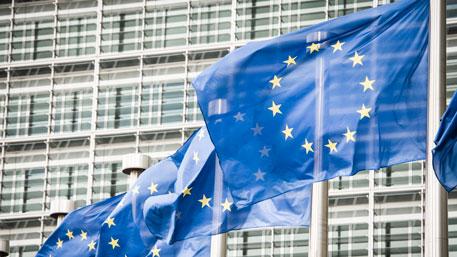 СМИ: Россия могла повлиять на референдум в Голландии