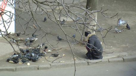 На Украине голодные люди отбирают хлеб у голубей