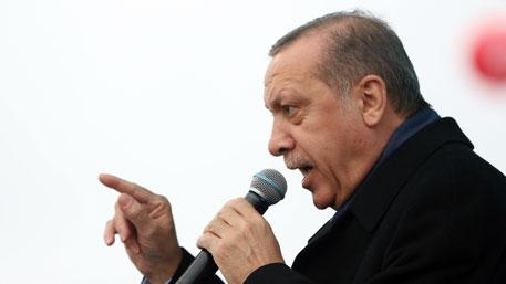 Эрдоган устроил скандал в Голландии «по заданию Путина» - СМИ