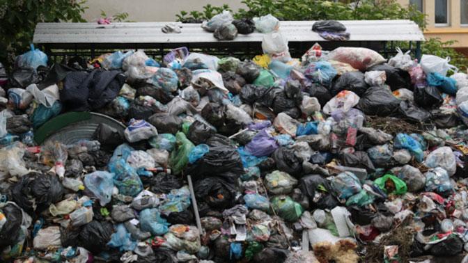 Семенченко обвинил в «мусорной катастрофе» во Львове Кремль