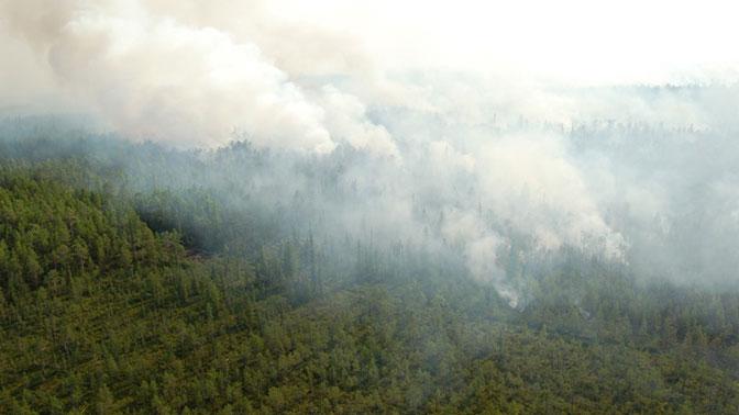 В Жиганском, Томпонском и на востоке Алданского районов сохраняется чрезвычайно высокий V класс пожароопасности леса