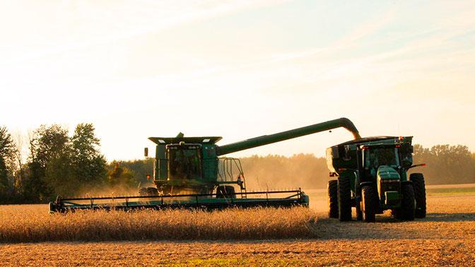 Ткачев рассказал о рекордном урожае зерна в России