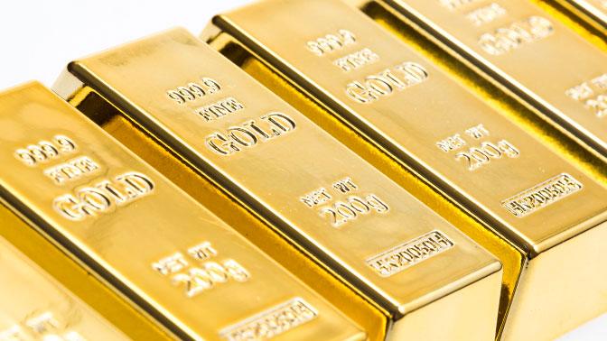 В Генпрокуратуре Украины рассказали об аресте полтонны золота, украденного Януковичем