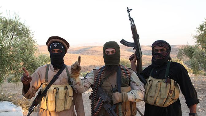 В МИД РФ считают, что «Ан-Нусра»* может занять место ИГИЛ*
