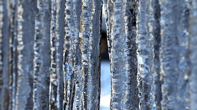 Многодетную семью изсоедененных штатов вполном составе заморозят вжидком азоте