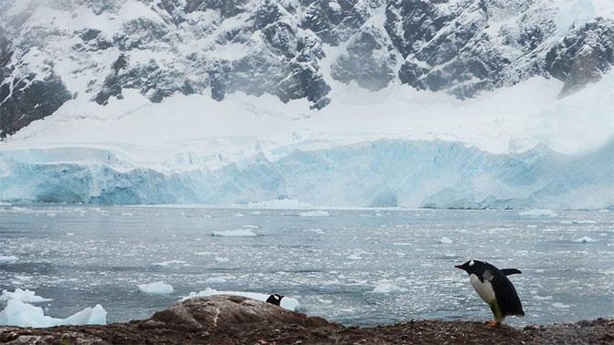 Ученые назвали сроки наступления нового ледникового периода