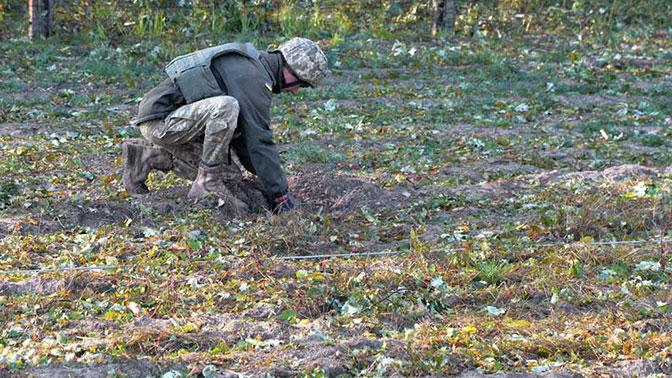ЛНР: ВСУ спрятали восемь танков близ линии соприкосновения вДонбассе