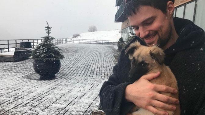 Данила Козловский всегда думал олабрадоре, однако отыскал собаку Грушу вГрузии
