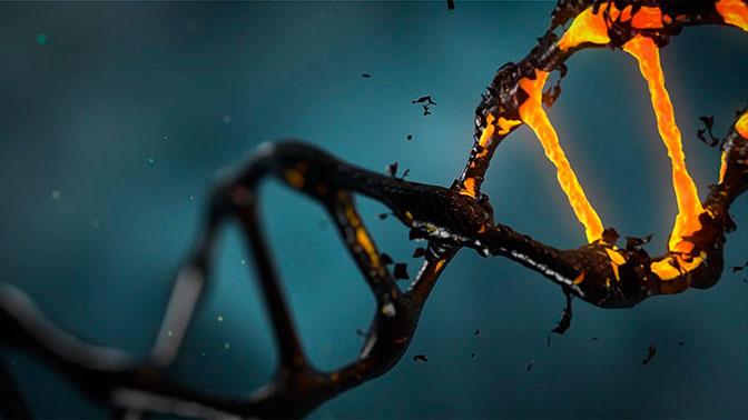 Пентагон изучает реакцию ДНК человека на воздействие биологического оружия - СМИ