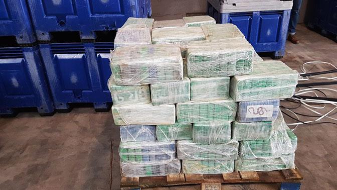 ВНидерландах задержали подозреваемых вконтрабанде 4,5 тонны кокаина