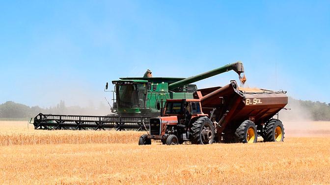 Российская Федерация побила рекорд СССР поурожаю зерна— Путин
