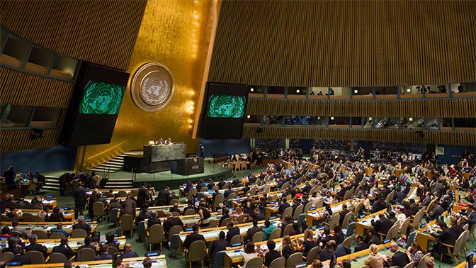 ООН: Сайт «Миротворец» нарушает право на личную жизнь ипрезумпцию невиновности