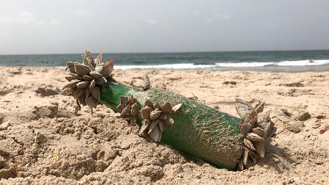 На береге  Австралии отыскали  старейшее вмире письмо вбутылке