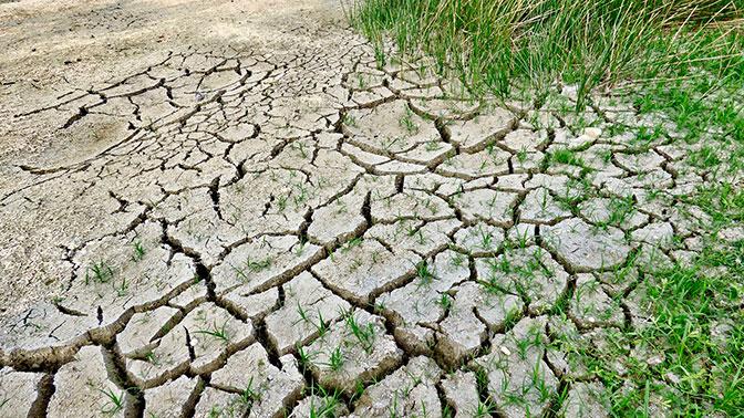 На США надвигается «смертоносная жара»