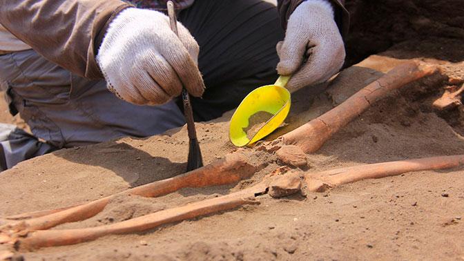В Перу нашли 47 гробниц времен высокоразвитой цивилизации
