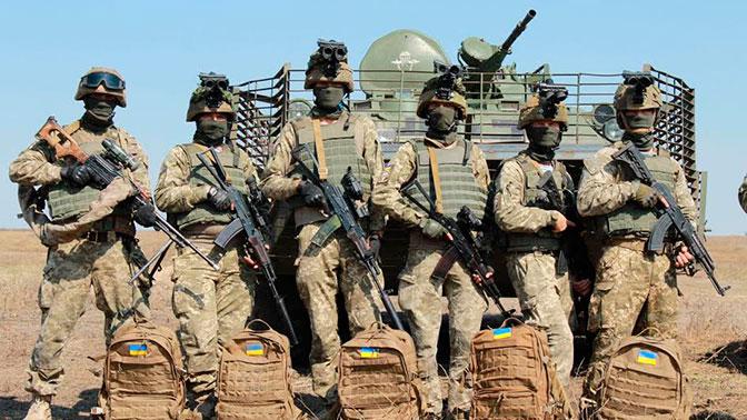 Некак у РФ: вУкраинском государстве больше небудет Десантных войск