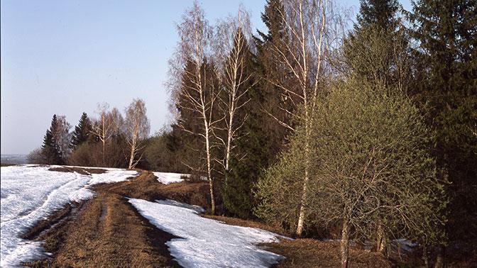 Роспотребнадзор: Около 800 человек пострадали отукусов клещей с15марта