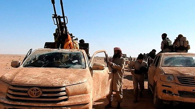 МИД проинформировал о планах террористов иСША сделать автономию наюге Сирии