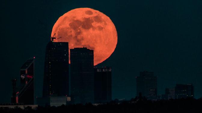 В NASA рассказали, когда люди заселят Луну