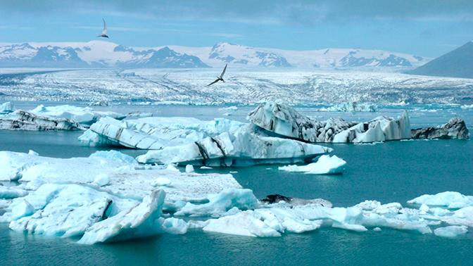 Профессор МГУ рассказал, к чему приведет потепление в Арктике