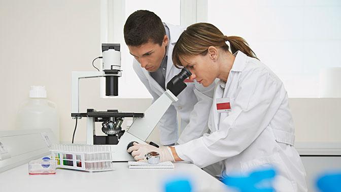 Ученые нашли в пиве лекарство от рака