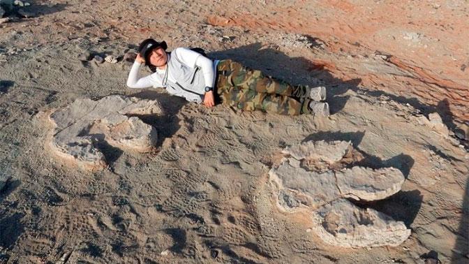 Следы гигантского динозавра нашли в пустыне Гоби