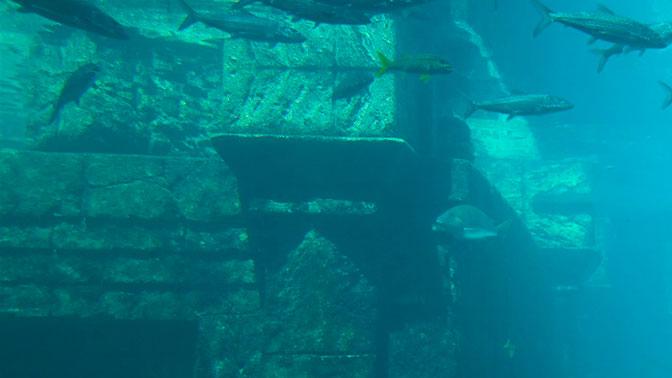 Загадка Атлантиды: ученые заявили об обнаружении следов затерянного государства