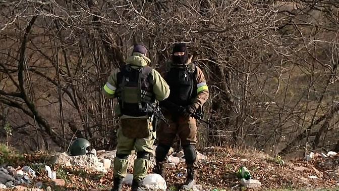 Три боевика уничтожены в Дагестане после попытки атаки на сотрудников ДПС