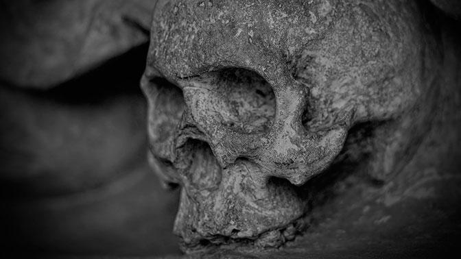 Древнейший в мире череп человека найден в Китае