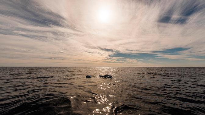 Почти 170 мигрантов пропали без вести в Средиземном море в результате кораблекрушения