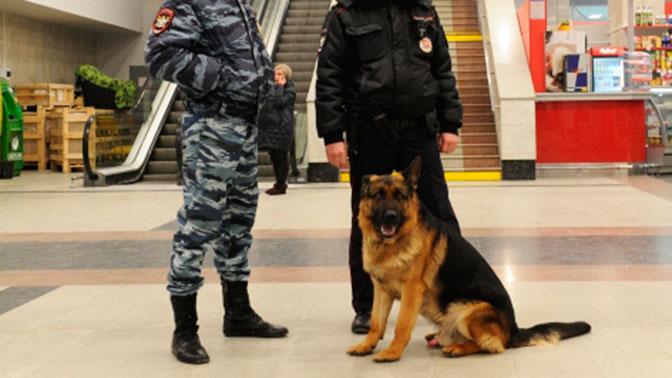В Москве около 30 зданий проверяют после сообщений о минировании