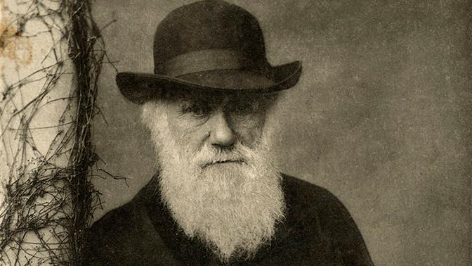 Тайна Дарвина. Слабое звено эволюции