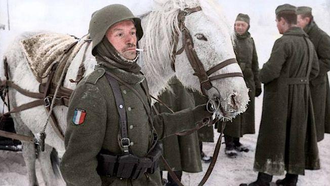 «Мушкетеры Гитлера»: как французы посрамили на Бородино своих предков