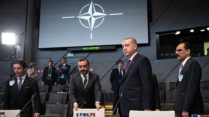 НАТО: период полураспада