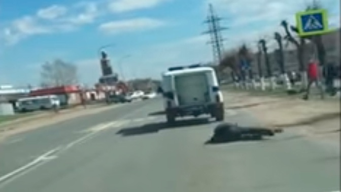 «Побег века»: задержанный на ходу выпал из полицейского УАЗа и ушел