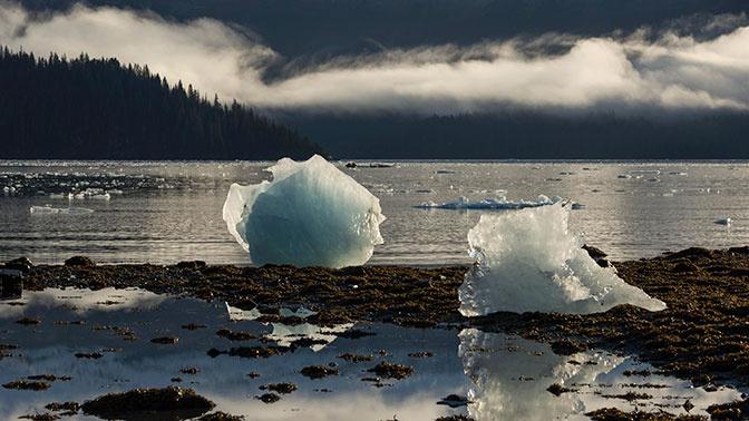 До неузнаваемости: ученые рассказали, как глобальное потепление изменит Сибирь