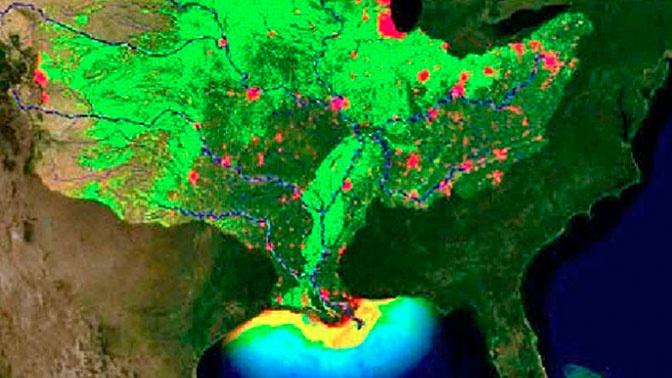 Площадь бескислородной зоны в Мексиканском заливе достигнет размера Багам