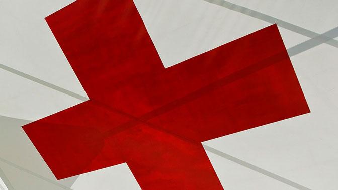 Красный Крест отправил 295 тонн гуманитарной помощи в Донбасс