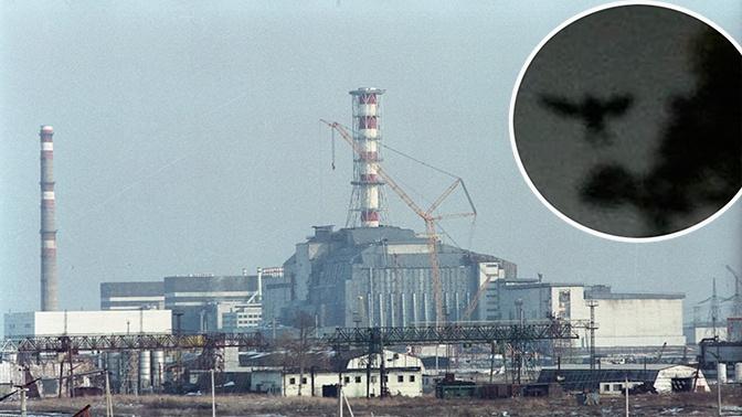 Британские СМИ рассказали о «таинственном существе», появившемся в Чернобыле незадолго до трагедии