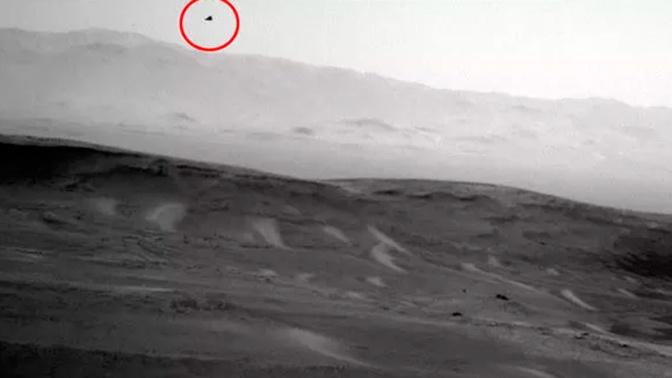 Уфологи нашли «марсианскую птицу» на снимке Curiosity