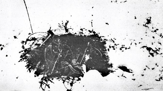Жуткие фото погибшей группы, дятлова выложили