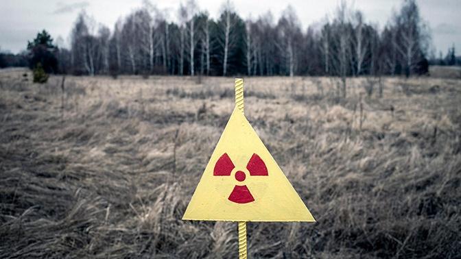 «Монстры» Чернобыля: в Сети показали фауну зоны отчуждения