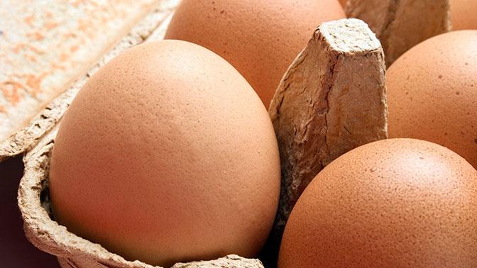 Соль и слезы: британка попыталась сварить яйца в микроволновке и едва не лишилась глаз