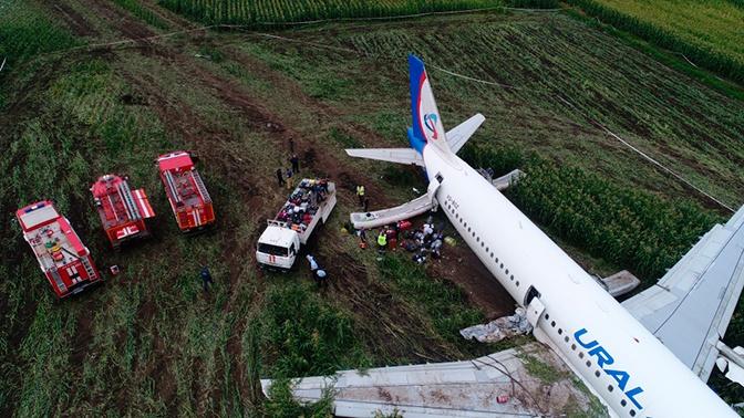 Командир совершившего аварийную посадку A321 вернулся в Екатеринбург